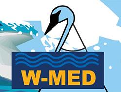 W-MED